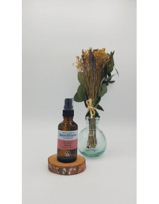 Huile végétale Ricin bio - 50 ml - De Saint Hilaire