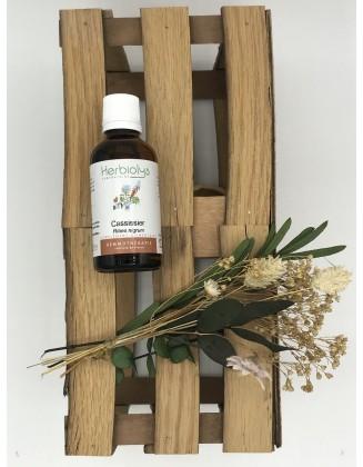 Cassissier - Ribes Nigrum - bio - 50 ml - Herbiolys