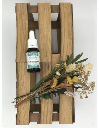 Star of Bethlehem - Dame de Onze Heures -Elixir Floral bio - 15 ml - Herbiolys