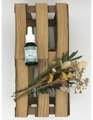 Larch - Mélèze -Elixir Floral bio - 15 ml - Herbiolys
