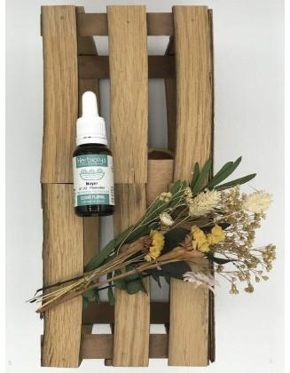Walnut - Noyer -Elixir Floral bio - 15 ml - Herbiolys