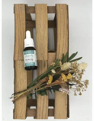 Pine - Pin Sylvestre -Elixir Floral bio - 15 ml - Herbiolys