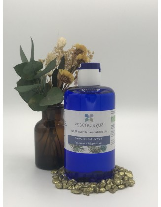 Hydrolat Carotte Sauvage bio - 250 ml - Essenciagua