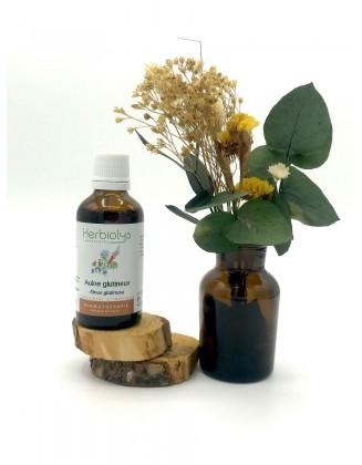 Aulne glutineux- Alnus glutinosa - bio - 50 ml - Herbiolys