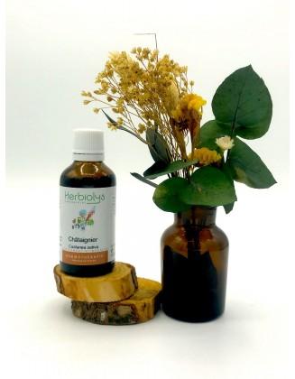 Chataignier - Castanea sativa - bio - 50 ml - Herbiolys
