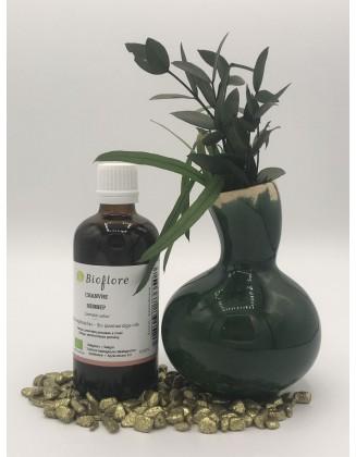 Huile de chanvre vierge bio - 100 ml - Bioflore